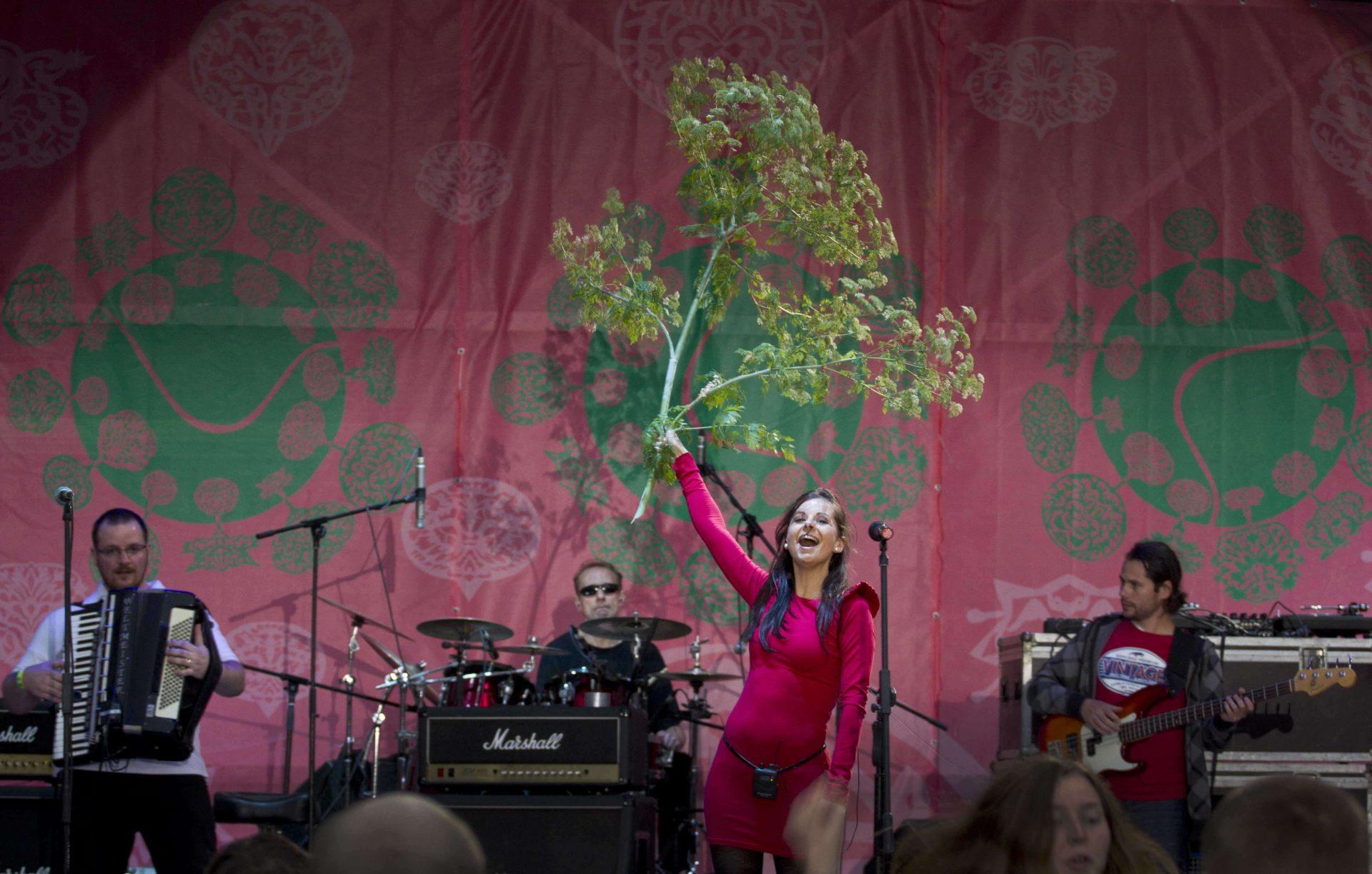 Вокалістка у піднятій руці тримає гілку дерева та троє музикантів на сцені фестивалю в Унежі