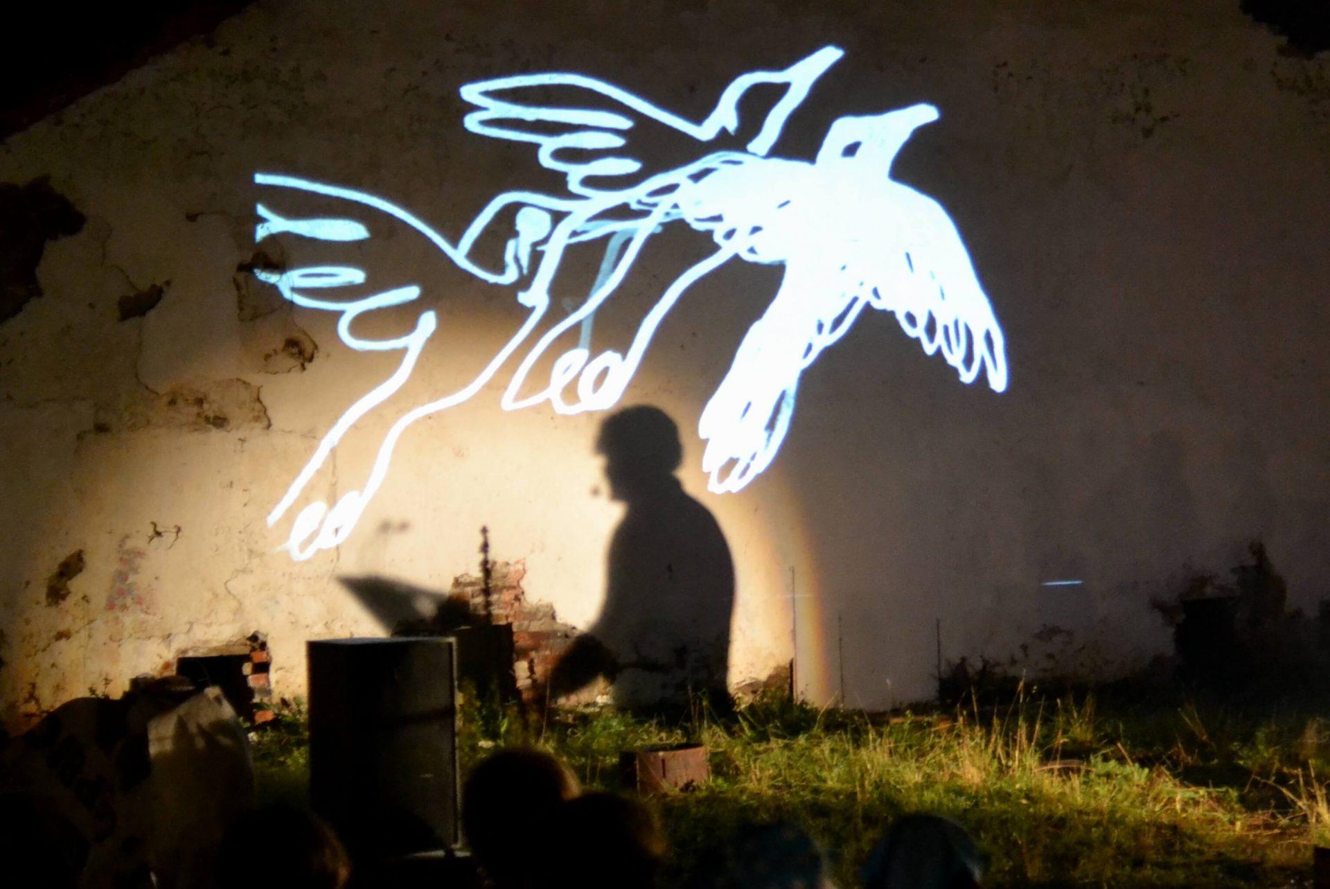 Тінь Ю. Андруховича та візуалізація птахів на стіні на фестивалі в Унежі