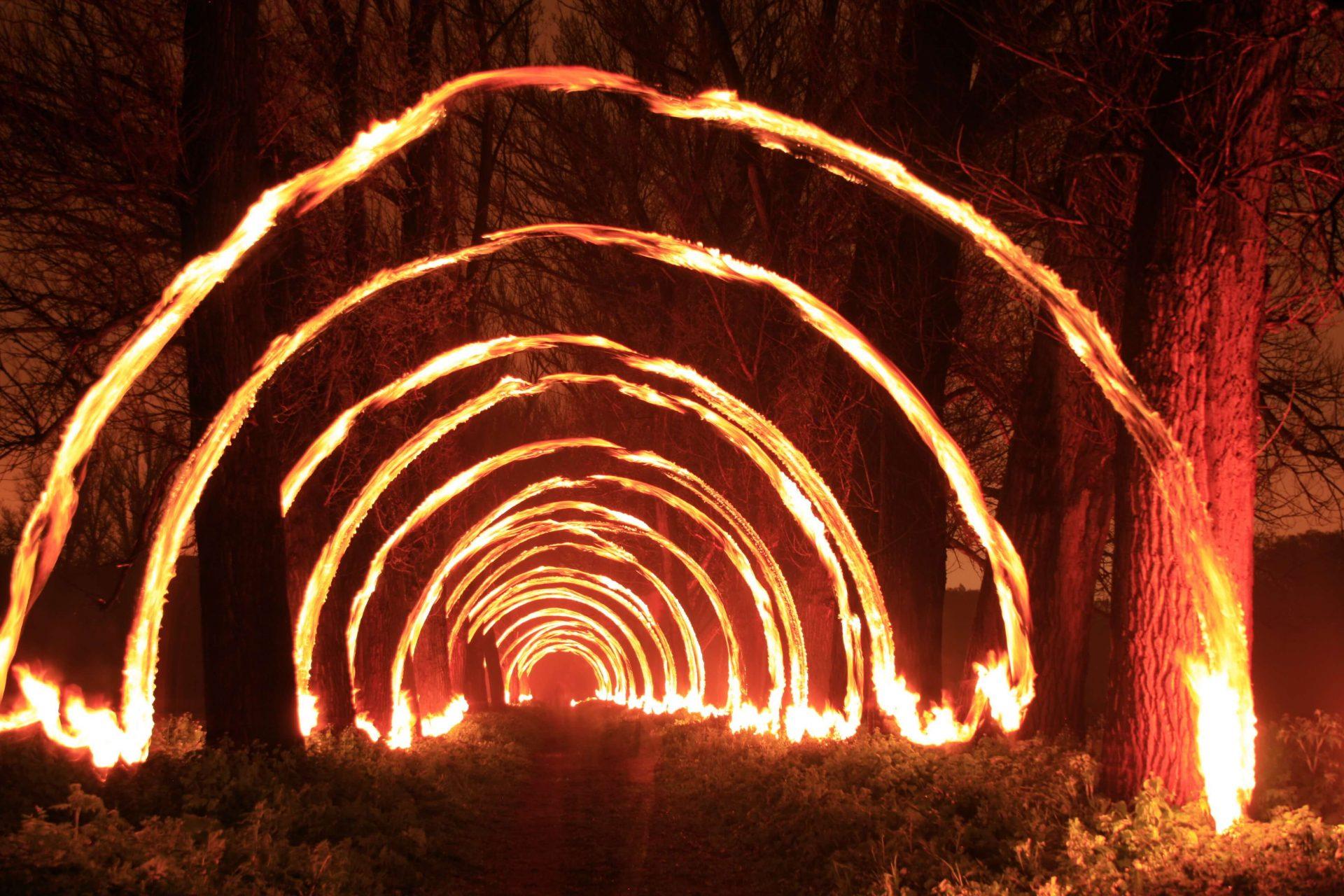 Безліч вогняних півкіл утворюють коридор між деревами на нічному фото на фестивалі ARTPOLE.LU